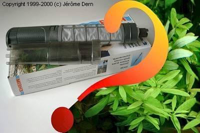 maladie plante verte mousse blanche